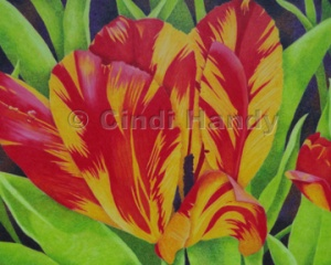 """8"""" x 10"""" colored pencil painting - $200"""