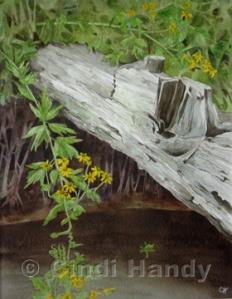 """11x14"""" watercolor - $300"""